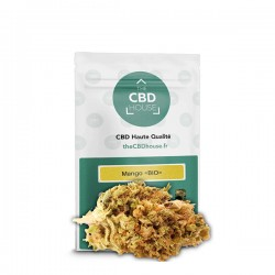 CBD Flores CBD House Mango Bio 1 gr.
