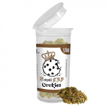 CBD Flores Plant of life Royal Cookies 1,5 g