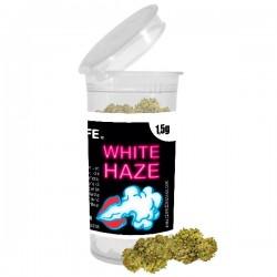CBD Flores Plant of life White Haze 1,5 g