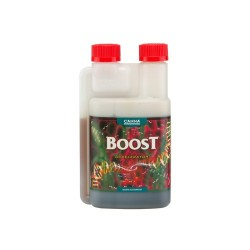 BOOST ACCELERATOR 250ML