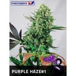 Positronics Purple Haze 5Und Fem
