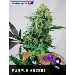 Positronics Purple Haze 1Und Fem