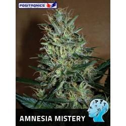 Positronics Amnesia Mistery 3Und Fem