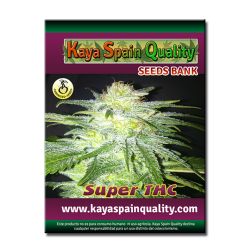 Kaya Spain Quality Super THC 3 und.