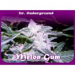 Dr Underground Melon Gum 8Und Fem.