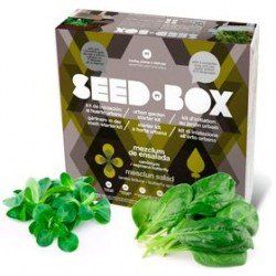 SeedBox Collection aromaticas intenso