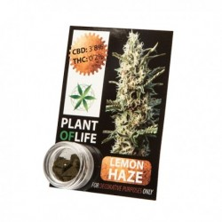 EXTRACTOS CBD HASH LEMON HAZE PLANT OF LIFE