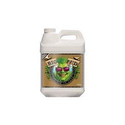 Big Bud Coco Liquid 10L