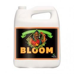 BLOOM 1L