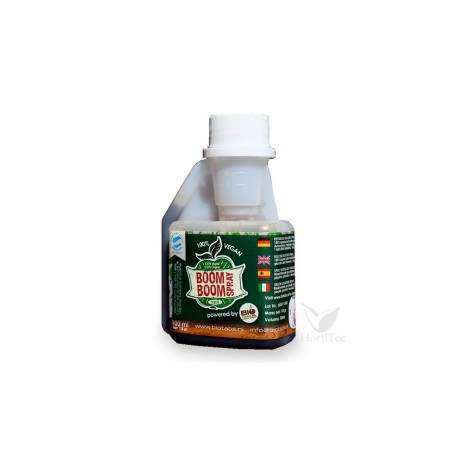 Boomboom spray 100 ml