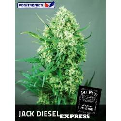 Positronics Jack Diesel Express 5Und