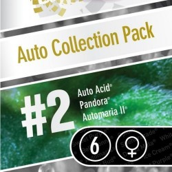 Paradise Seeds Auto Collection Pack2 6Und
