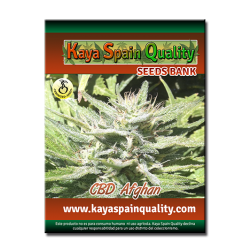 Kaya Spain Quality CBD Afghan 5 und.