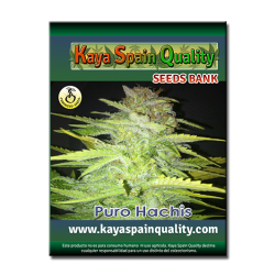 Kaya Spain Quality Puro Hachis 3 und.