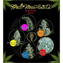 Green House Sativa Mix 5Und Fem.