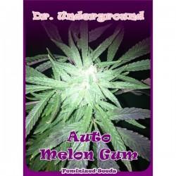 Dr Underground Auto Melon Gum 4Und