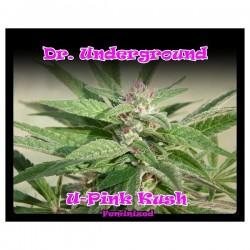 Dr Underground U-Pink Kush 4Und Fem.