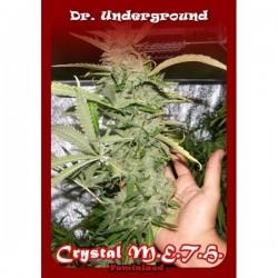 Dr Underground Crystal M.E.H.T. 4Und Fem.