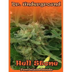 Dr Underground Hell Stone 4Und Fem.