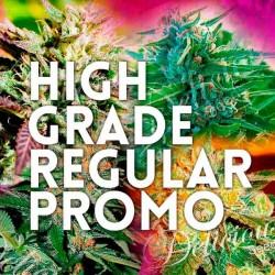 Delicious Seeds High Grade Regular Promo