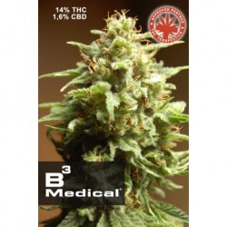 Pure Seeds B3 Medical 3 unid