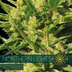 Vision Seeds Northern Lights Auto 3 unids