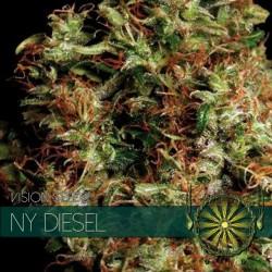 Vision Seeds NY Diesel 5 unids