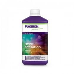 Green sensation 100ml