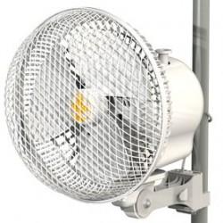 Monkey Fan 13W Pole&clips R1.00 Secret jardin