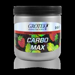 Carbo Max 100Gr